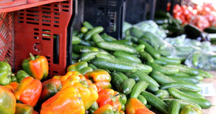 週末のオーガニック市 FARMERS MARKET(ファーマーズマーケット) | KINGS CROSS(キングスクロス)
