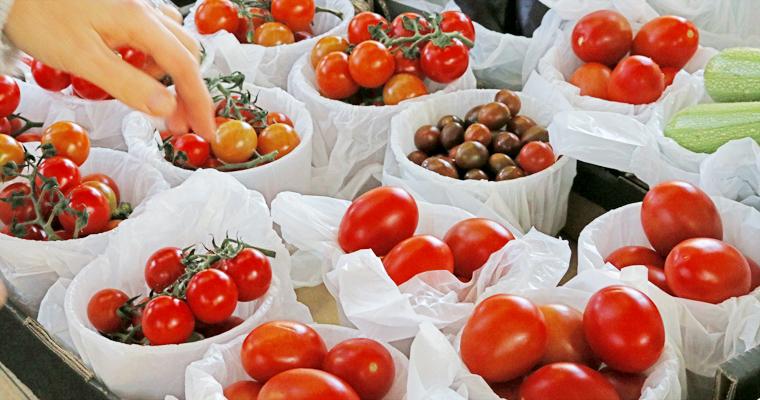 ニューオープンのマーケット ROSE BAY FARMERS MARKET | ROSE BAY(ローズ・ベイ)