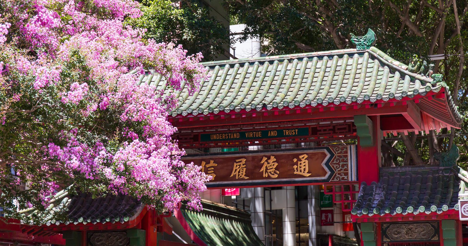チャイナタウンでお粥の朝食 SUPERBOWL CHINESE RESTAURANT(スーパーボウル) | HAYMARKET(ヘイマーケット)