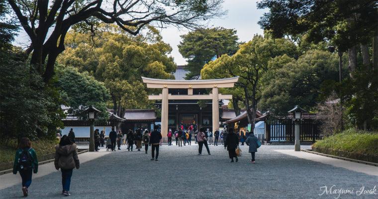 都会の真ん中にあるパワースポット 明治神宮 | TOKYO